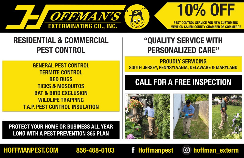 Hoffman's Extermination colored half page advertisement
